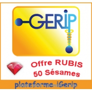 iGerip - Offre Rubis