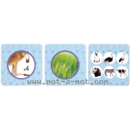 Flashcards - Animaux