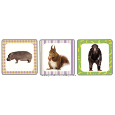 Flashcards - Animaux 2