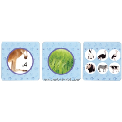 Flashcards - Animaux 1