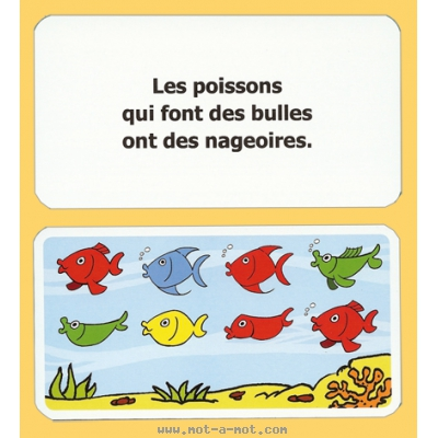 Danger requins ! 6
