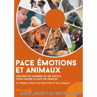 PACE Emotions et Animaux