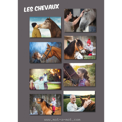 PACE Emotions et Animaux 4